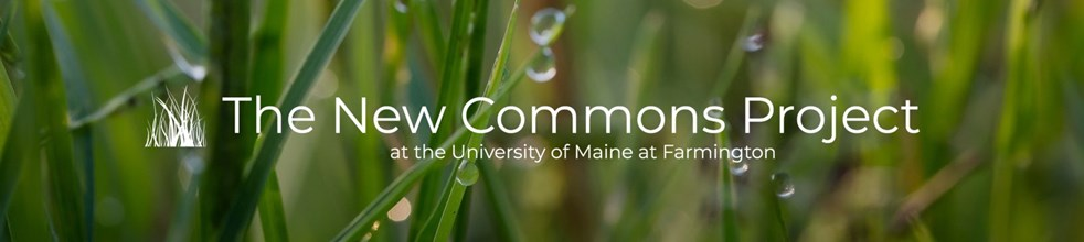 The New Commons Project at the University of Maine at Farmington