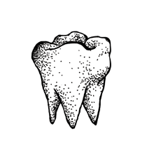 Art Tooth