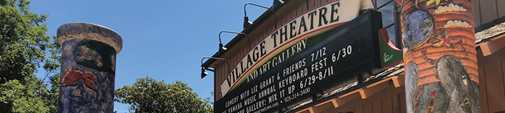 Town of Danville ~ Village Theatre Art Gallery