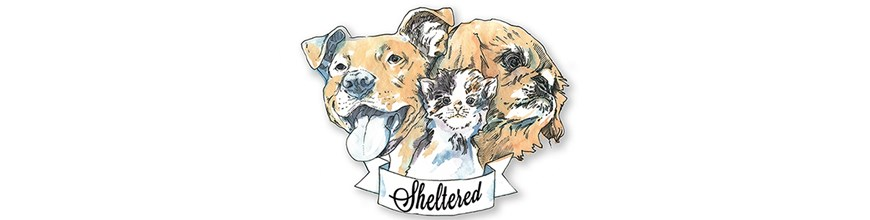 Sheltered: an art benefit for animals at risk